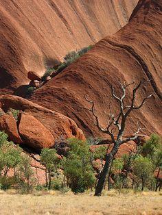 Mutitjulu Waterhole - Uluru Kata Tjuta National Park, Central Australia