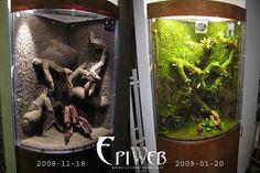 www.epiweb.se mm stationery A_VertPic EWIIS.jpg