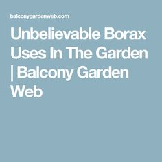 Unbelievable Borax Uses In The Garden | Balcony Garden Web