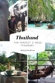 Travelling Thailand for 2 weeks? Here is a perfect 2 week itinerary from Phuket, Bangkok and Chang mai with some in between. This guide will tell you how to get around, what we loved, what we'd skip and the best food to try 2 Weeks In Thailand, Thailand Vacation, Thailand Travel Guide, Thailand Itinerary 2 Weeks, Thailand Destinations, Malaysia Travel, Croatia Travel, Holiday Destinations, Italy Travel