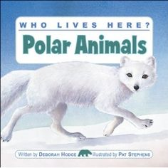 Who Lives Here? Polar Animals, written by Deborah Hodge and illustrated Pat Stephens