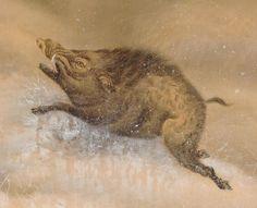 hosen wild boar in snow