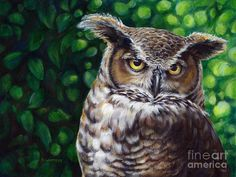 Acrylic Painting of Owls | ... Great Horned Owl Painting - Wisdom Great Horned Owl Fine Art Print