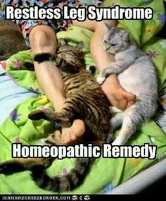 Poor kitties would be kicked out of bed by some patients with RLS.