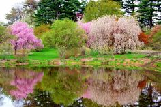 11 of The Prettiest Parks in Boston.  If you aren't stuck indoors all day long, or you can sneak away for a long (late) lunch, or head out just a bit early, we have some ideas about where you should be going. Whether you bring a book, some work that's left to do, or just your thoughts, these pretty landscapes found in and around Boston will provide you with some much-needed fresh air and, hopefully, inspiration.