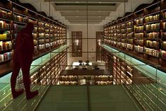 The new library by bgp architecture in Mexico City