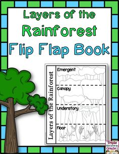 Have students learn, practice, or reinforce their knowledge of the rainforest with this great flip flap book. Each door is labeled with the layer of the rainforest. The door opens to reveal two animals that live in that layer. Perfect for an interactive notebook OR as a project.
