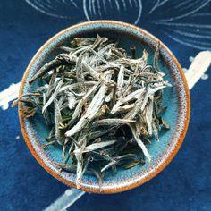 Bai Hao Yin Zhen. Hairy buds. . #baihaoyinzhen #silverneedle #silverneedles #baicha #whitetea #gongfutea #zhentea #chinesetea #gongfucha #teacup #tealeaf #morningtea #teaoftheday #tealover #tealovers #teamoment #tealife #teaaddict #teapot