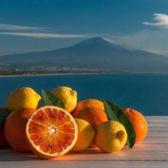 Offerte di lavoro Palermo  #annuncio #pagato #jobs #Italia #Sicilia Social farming: la Coca-Cola punta sugli agrumi siciliani