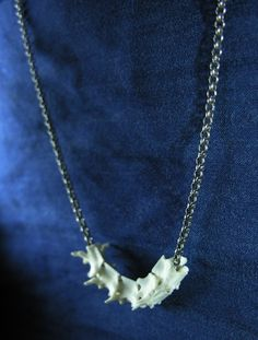 Dainty Snake Vertebrae on Elegant Antiqued Silver Rollo Chain on Etsy by BoneLust