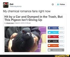 At times like these to feel better us little pigeons just need to shit over every one else's favorite stuff