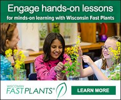 Tons of free resources for teaching with plants https://fastplants.org
