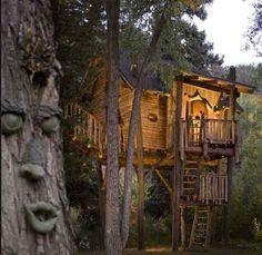 Modern Tree House Design
