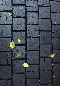 How to char wood for pathways or shingles