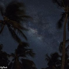 "Repost from Instagram ! #WeLike ! #Madinina by @airnam_flash ""Vue sur la Voie Lactée depuis la plage des Salines  View over the Milky Way from The Salines beach  Martinique  #amazing_longexpo #bella_shots #bestnatureshot #caribbean  #divinafotografia #fantastic_shotzs #hot_shotz #ig_martinique #ig_caribbean #ig_masterpiece #ig_serenity #ig_captures #ig_exquisite #ig_ege #hdr_captures #martinique #frenchwestindies #longexposure #longexpoelite #lazyshutters #splendid_horizon #igglobalclub…"