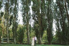 Perfect Poplars Trees. Whidbey Island Wedding