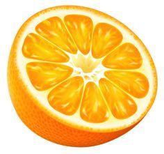 Half Orange PNG Vector Clipart Image