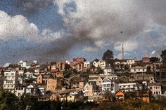 Um enxame de gafanhotos invade o centro de Antananarivo, em Madagáscar. Foto: Rijasolo/AFP