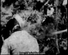 ▶ Rape of Nanking Part I Atrocities in Asia Nanjing Massacre - YouTube