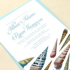Seashell Beach Wedding Invitation - by Concertina Press