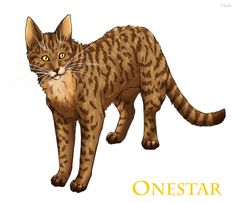 Onestar Leader of WindClan after Tallstar. Onestar replaced Mudclaw as deputy and then became Leader of WindClan.
