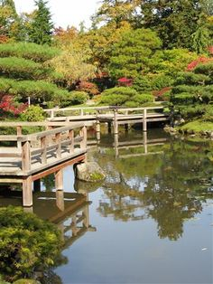 Japanese Garden, Seattle  Photo by Taryn Koerker