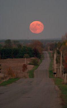 "Ted Hughes: ""Harvest Moon"""