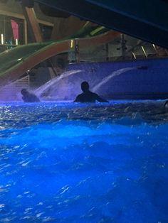 souvenir de la soirée du 22 octobre 2015 à l'Archipel le Spa