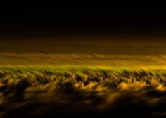 """Buy Sierra Gold 1 - Limited Edition of 20, a Color on Aluminium by MAZ MAHJOOBI from United States. It portrays: Landscape, relevant to: sagebrush, black, abstract landscape, sierra nevada, dark, abstract, gold, golden, green, golden light, motion, movement """"Sierra Gold 1""""  Fine Art HD Metal Print, professionally printed and transferred into the high gloss finish aluminum using special sublimation inks. HD Metal Prints are by far the most vibrant and luminescent prints currently ava..."""
