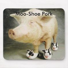Piggy with little Cow slippers! Funny Animal Photos, Funny Animals, Funny Pictures, Cute Animals, Animal Pics, Crazy Animals, Animals Images, Wild Animals, Baby Pictures