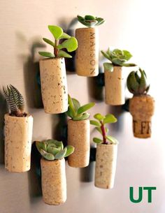DIY Magnetic Cork Planters - 8 DIY Magnetic Planter Ideas for Effortless Planting - DIY & Crafts