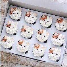 Ich bin dabei, 103 Kommentare - Brooke Haven (brookiescookiesco) en Instag - Food Art - Kitty Cupcakes, Animal Cupcakes, Puppy Cupcakes, Kitty Cake, Flower Cupcakes, Kitty Party, Cupcake Frosting, Cupcake Cookies, Decoration Patisserie