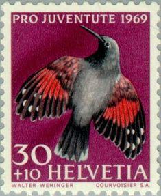 Znaczek: Wallcreeper (Tichodroma muraria) (Szwajcaria) (Pro Juventute: Birds) Mi:CH 916,Sn:CH B388,Yt:CH 848,Zum:CH J230