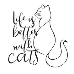 Calling all cat lovers! This sweet wall quote reads, Life is better with cats. With a fluffy tail and eyelashes, this cat decal has a sophisticated look. Better With Cats Wall Quote Decals contains 2 pieces on 2 sheets that measure x inches. Crazy Cat Lady, Crazy Cats, Round Robin, Cat Signs, All About Cats, Quotes About Cats, Cat Wall, Cat Quotes, Cat Drawing