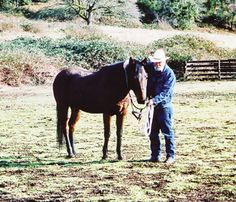 Your horse should come to you when you call and stand still while you halter him. Read on for how to accomplish this goal. >good article from Trail Rider Magazine