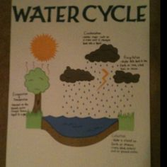 Inside water cycle diagram travis 4th grade science journal water cycle poster we made for zachs 4th grade classroom ccuart Gallery