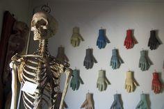 """Skeleton and hand models for """"la médecine opératoire"""" Musée Orfila, Paris. Courtesy Université Paris Descartes by astropop, via Flickr"""