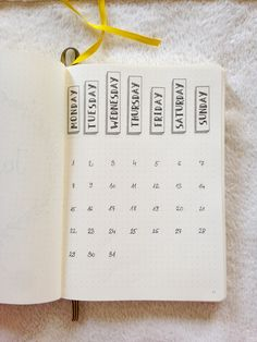 Minimalist Bullet Journal/ January /Diary