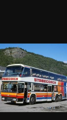 Bus Coach, Busses, Coaches, Modern, World, Trainers, Trendy Tree