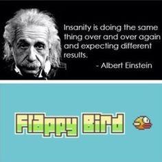 Einstein Knows Flappy Bird