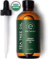 There are a myriad of tea tree oil benefits in today's society. Everything from acne treatments to clearing the air. Tea tree oil is a necessity in one's arsenal of natural medicinal products. Eucalyptus Essential Oil, Tea Tree Essential Oil, Organic Essential Oils, Best Essential Oils, Organic Tea Tree Oil, Tea Tree Oil For Acne, Organic Oil, Huile Tea Tree, Oils For Sore Throat