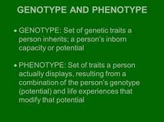 temperament genotype (permanent) phenotype (alterabl) behaviour