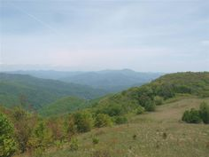 View from Purchase Knob Looking Northeast This a web cam located on Purchase Know inside the National Park.