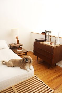 Oliver & Sherrie's Mini Bronx Loft.  Name: Oliver (graphic designer), Sherrie, & Cookie (4yr old Pekingese) Location: Bronx, New York Size: 525 square feet Years lived in: Under 2 years; Rented