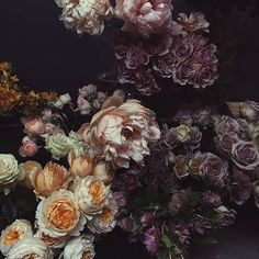 Perfectly moody flowers for this Halloween weekend | photo and flowers @nicamille