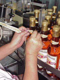 Pinar del Rio Manos femeninas en el etiquetado de botellas