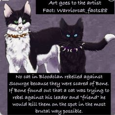Wow you'd think its be scourge and not bone that third be afraid of most
