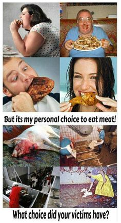 """Pro vegan: """"But its my personal choice to eat meat"""" what choice did your victims have?"""