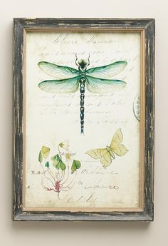 Dragonfly and oxalis  #art #journal