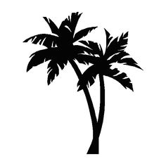palm tree ❤ liked on Polyvore featuring fillers, backgrounds, black fillers, black, flowers, doodles, quotes, text, phrase and saying